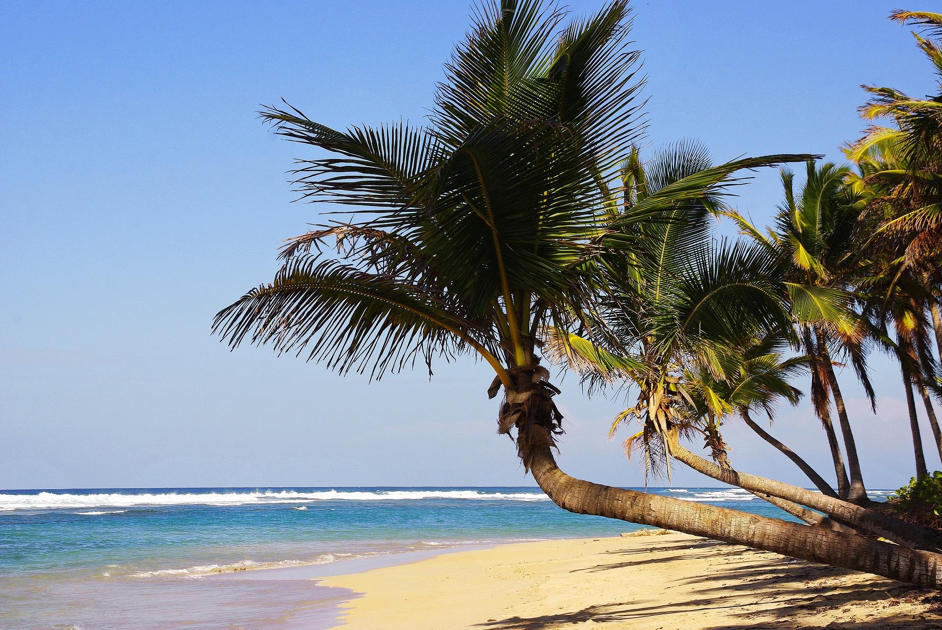 - 35% | Dès 774€ p.p : séjour en République Dominicaine